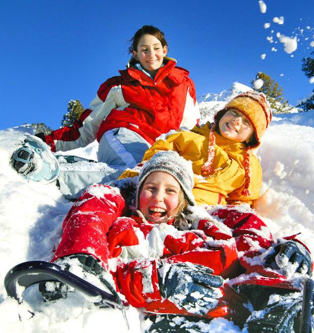 такса конкурс фотографий зимние каникулы разделы полного короткого