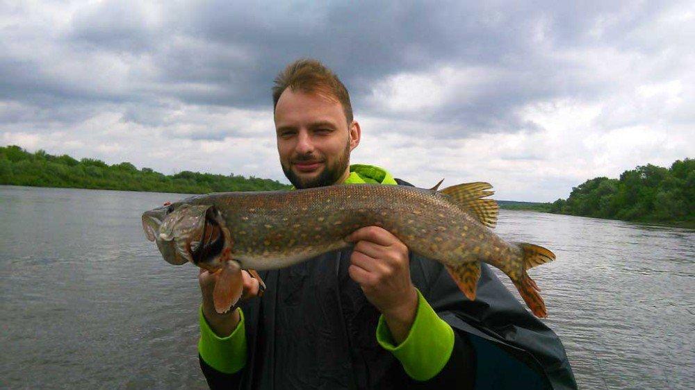 Рыбалка на оке сегодня белоомут