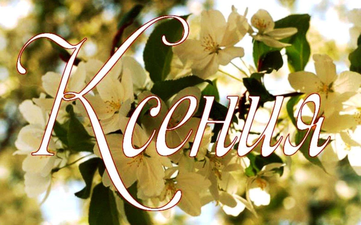 открытка цветы для ксюши