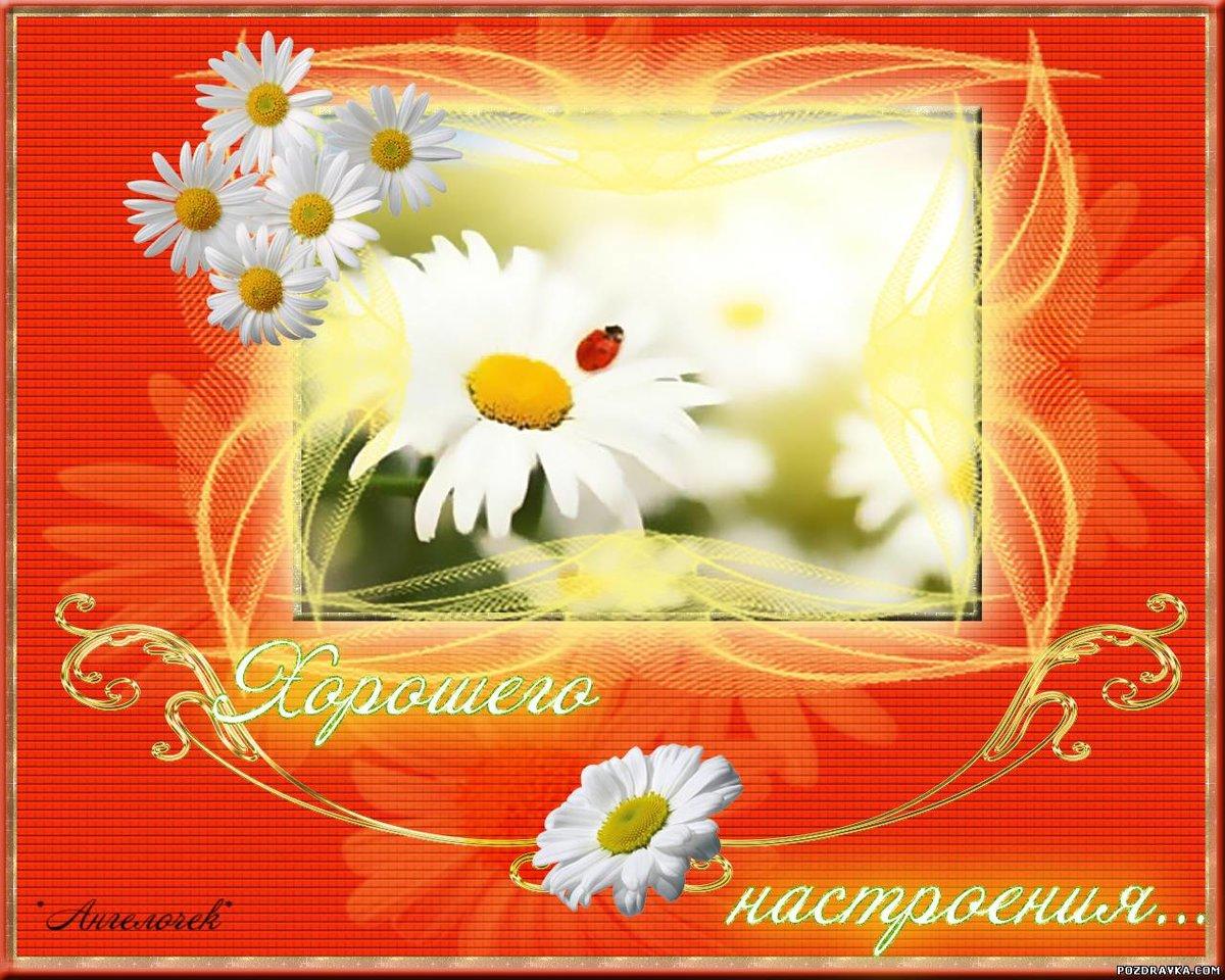 Лучшие пожелания в открытках