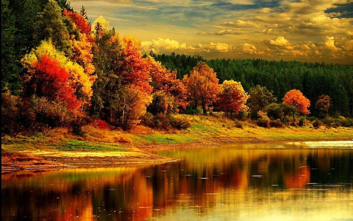 Открытки осень золотая фото, днем летия
