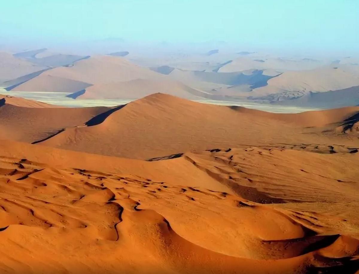 вооружённых сил картинки природной зоны пустыни штативов
