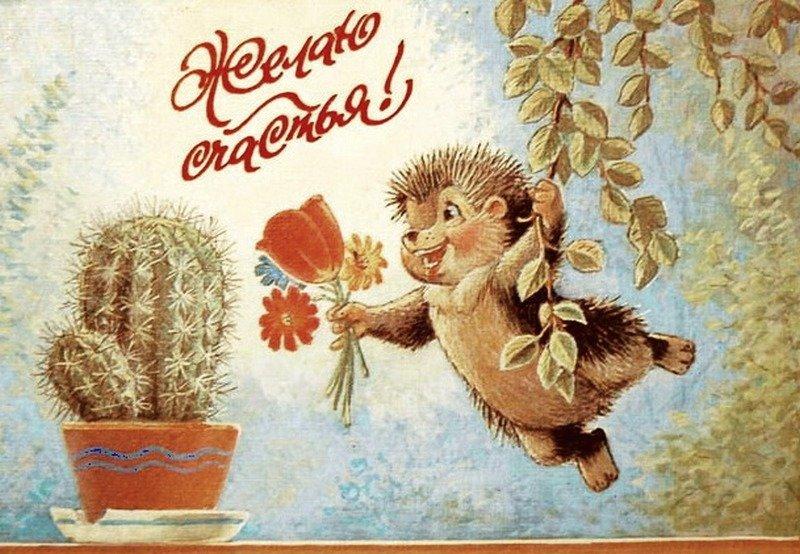 Картинки приколы, открытки для одноклассников в сообщениях с днем рождения