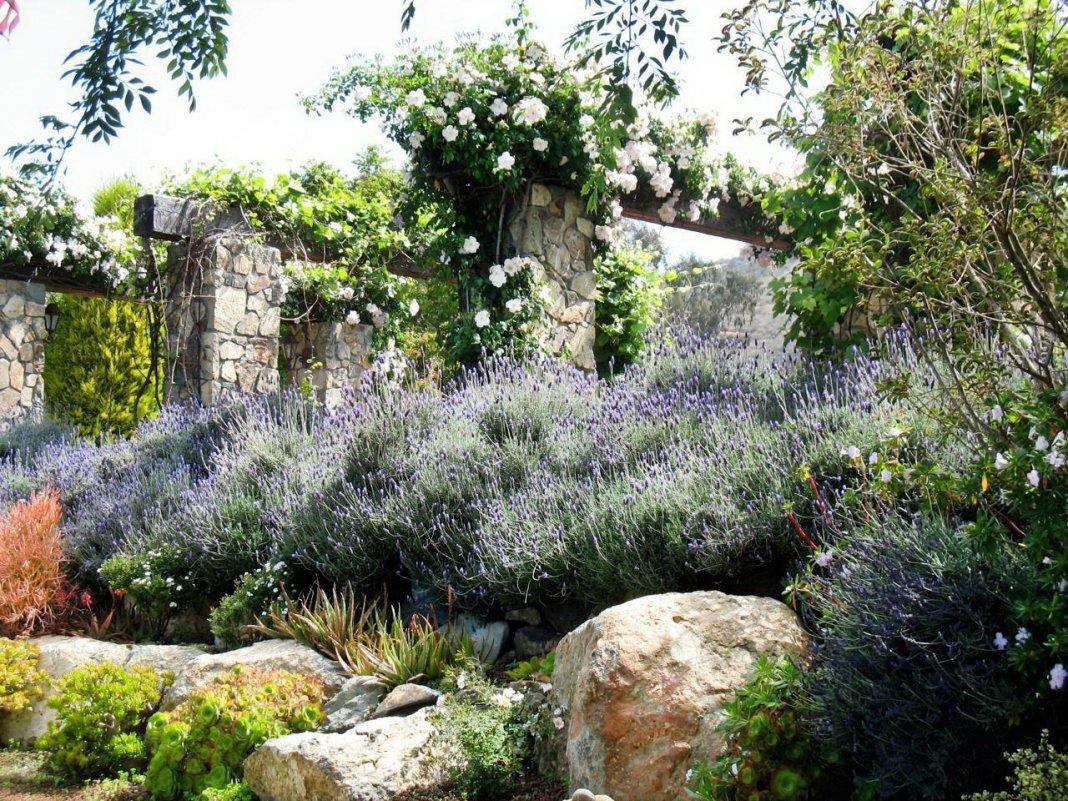 исаев сад в стиле прованс смотреть фото генералов отличались