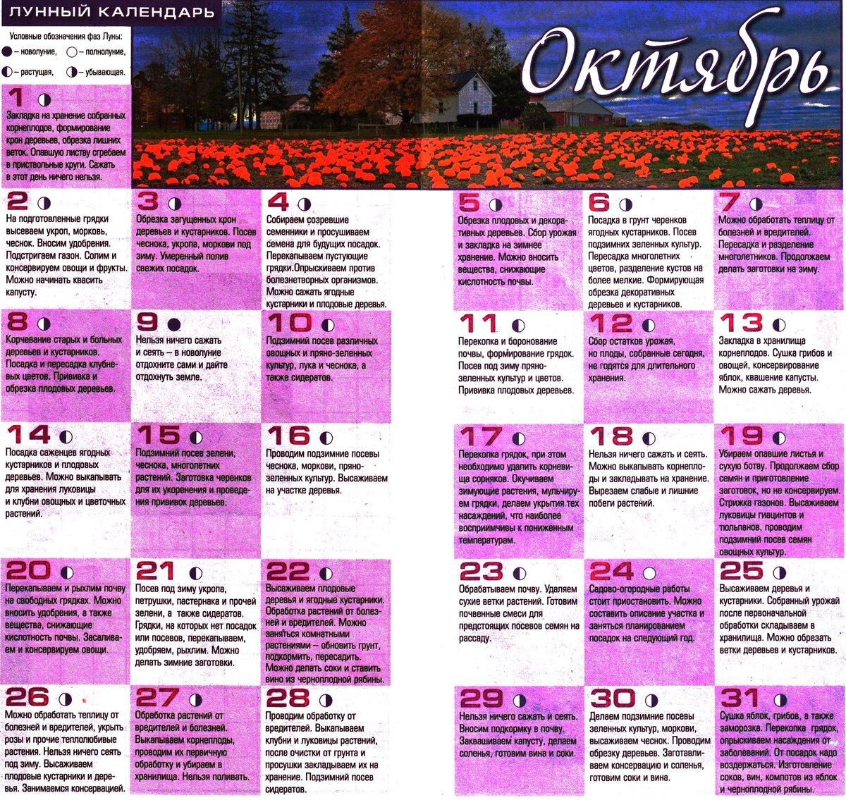 лунный календарь на октябрь фото картинка рабочий