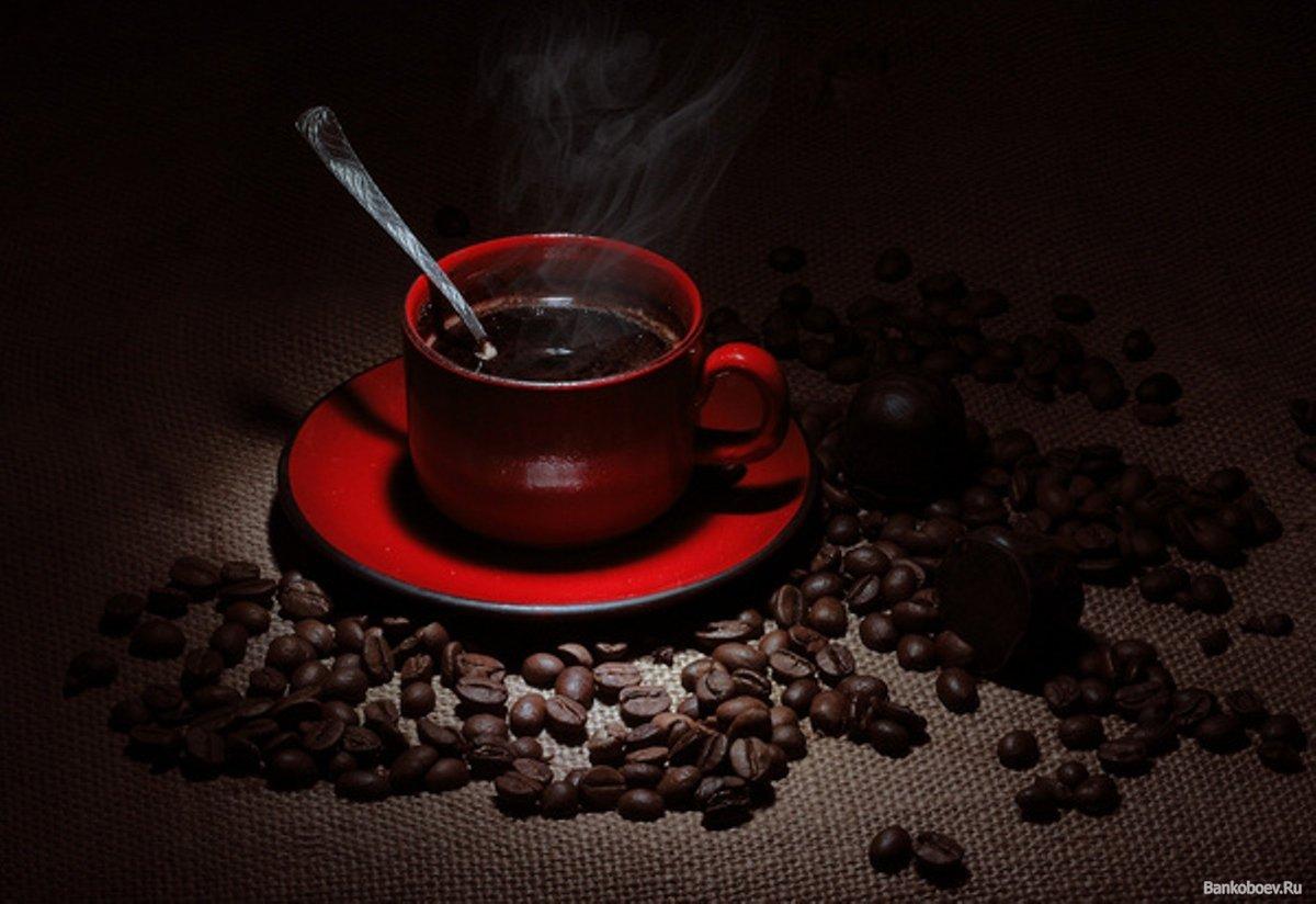 Смешные где, гифы чашечка кофе для тебя