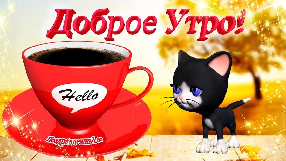 День рождения, картинки кошечки с надписями доброе утро