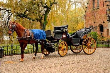 коляска с лошадьми
