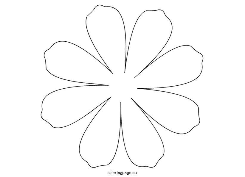 Шаблоны цветов ромашки картинки
