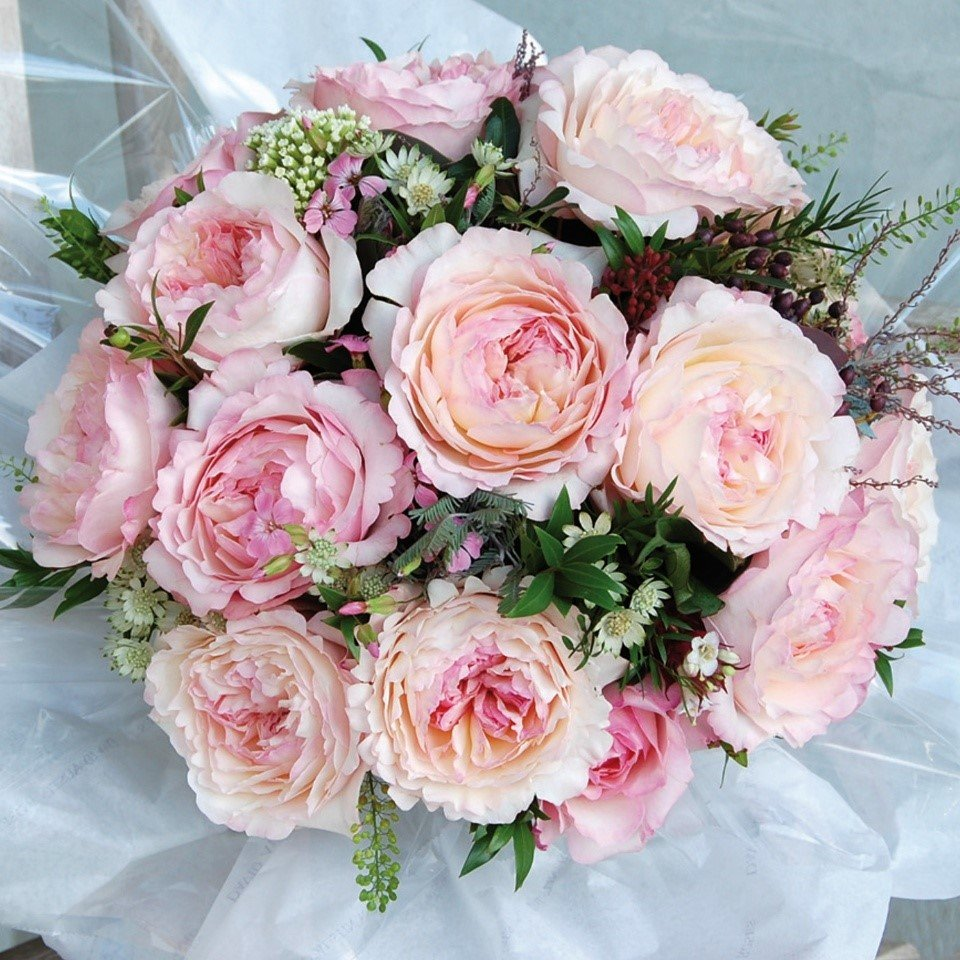 С днем рождения картинка пионовидные розы, открытку днем татьяны