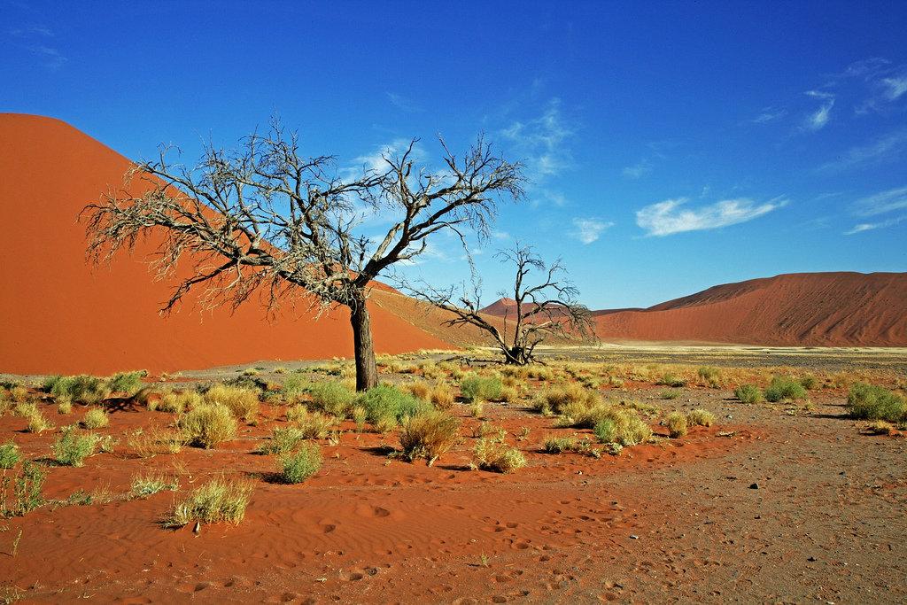namibia - 1024×683