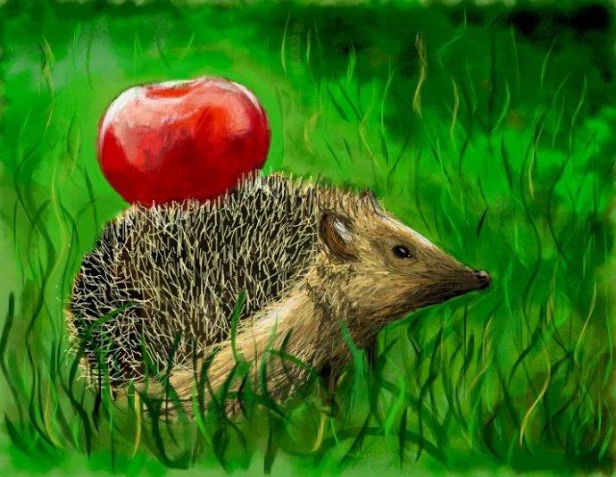 Картинка ежик с зеленым яблоком