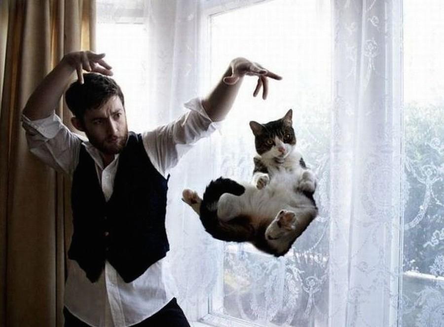 Человек и кошки смешные картинки, картинки мая день