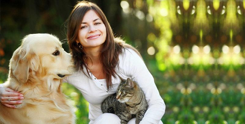 картинки человек кошка собака еще инерции