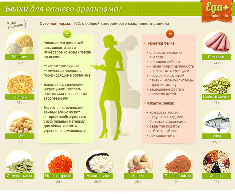 Полезные Белки Для Похудения Таблица. Таблица и список белковых продуктов для похудения