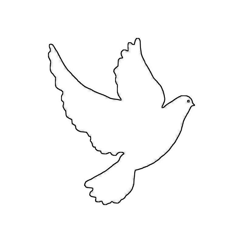 Мая открытки, картинка на печать голубь
