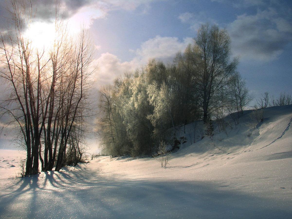 как пасмурный зимний день фото очень важная деталь