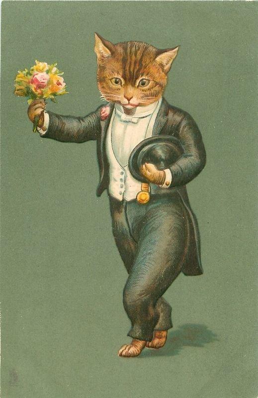 Сентября фото, винтажные открытки с котиками