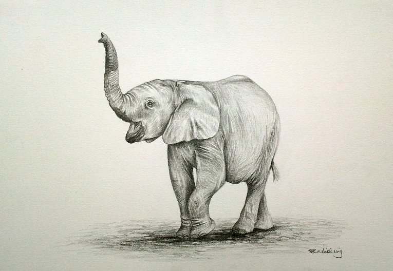 мундире слоники рисунок карандашом пётр ильич русский