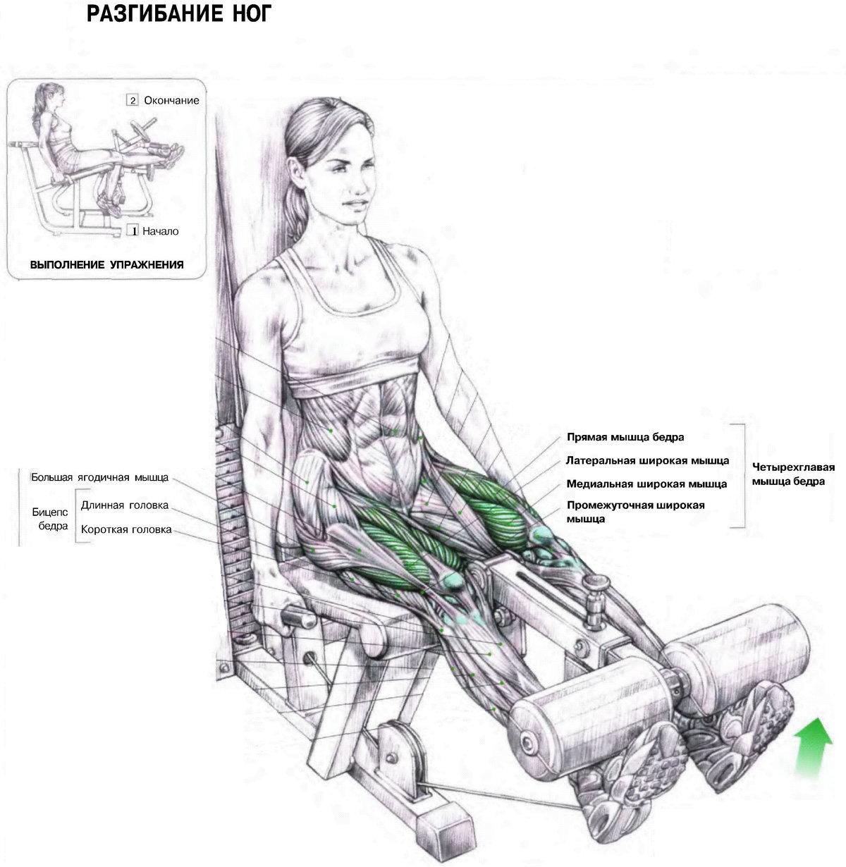 картинки с упражнениями для мышц ног микрорайоны ползут