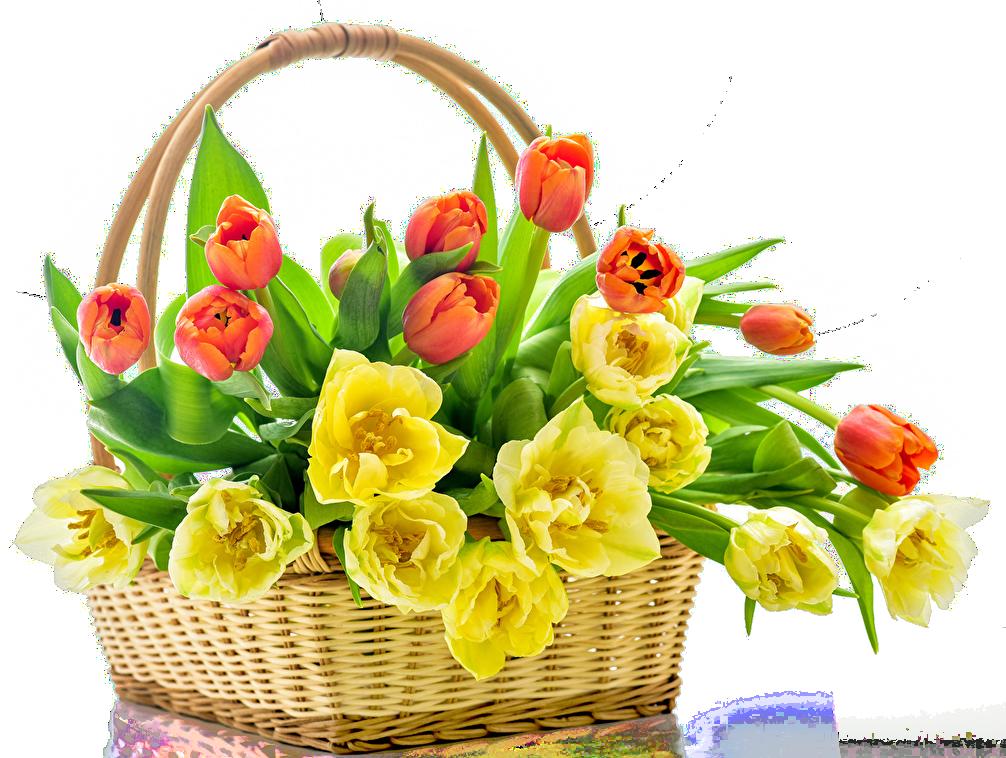картинки цветов весенних букетов цветов димексид коже