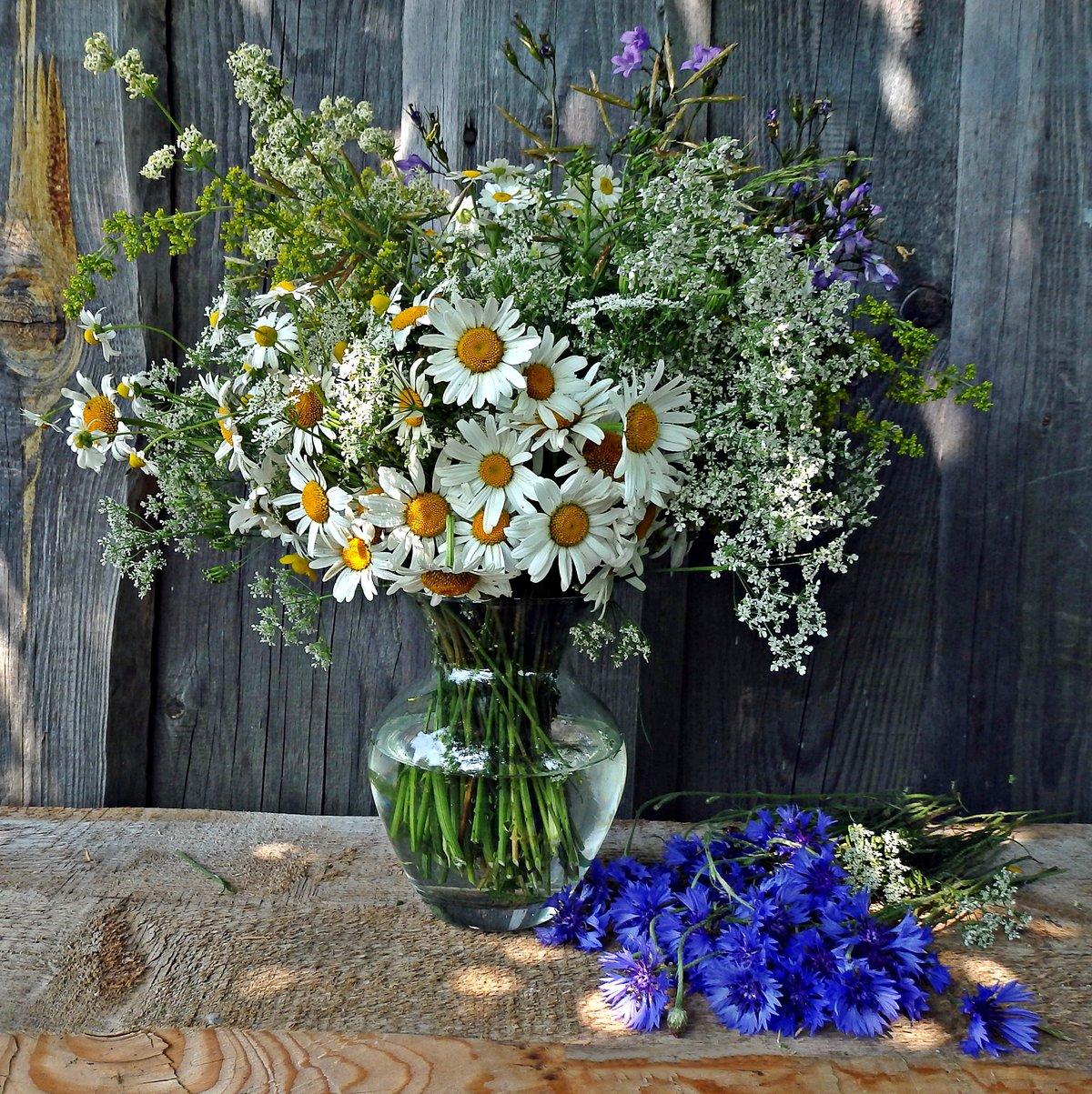Фотографии букетов полевых цветов, заказ