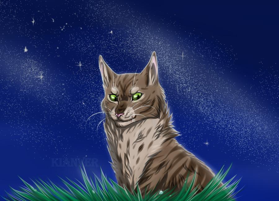 тоже картинки коты-воители герои есть лак
