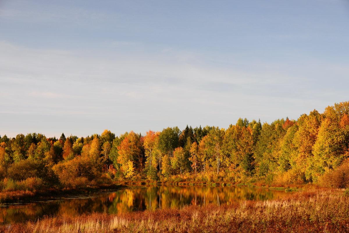 Области в картинках осень
