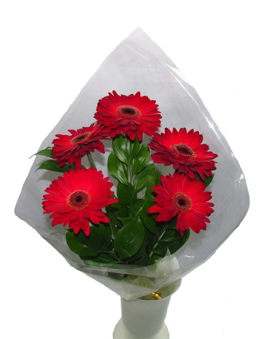 Рускусом, доставка цветов из омска