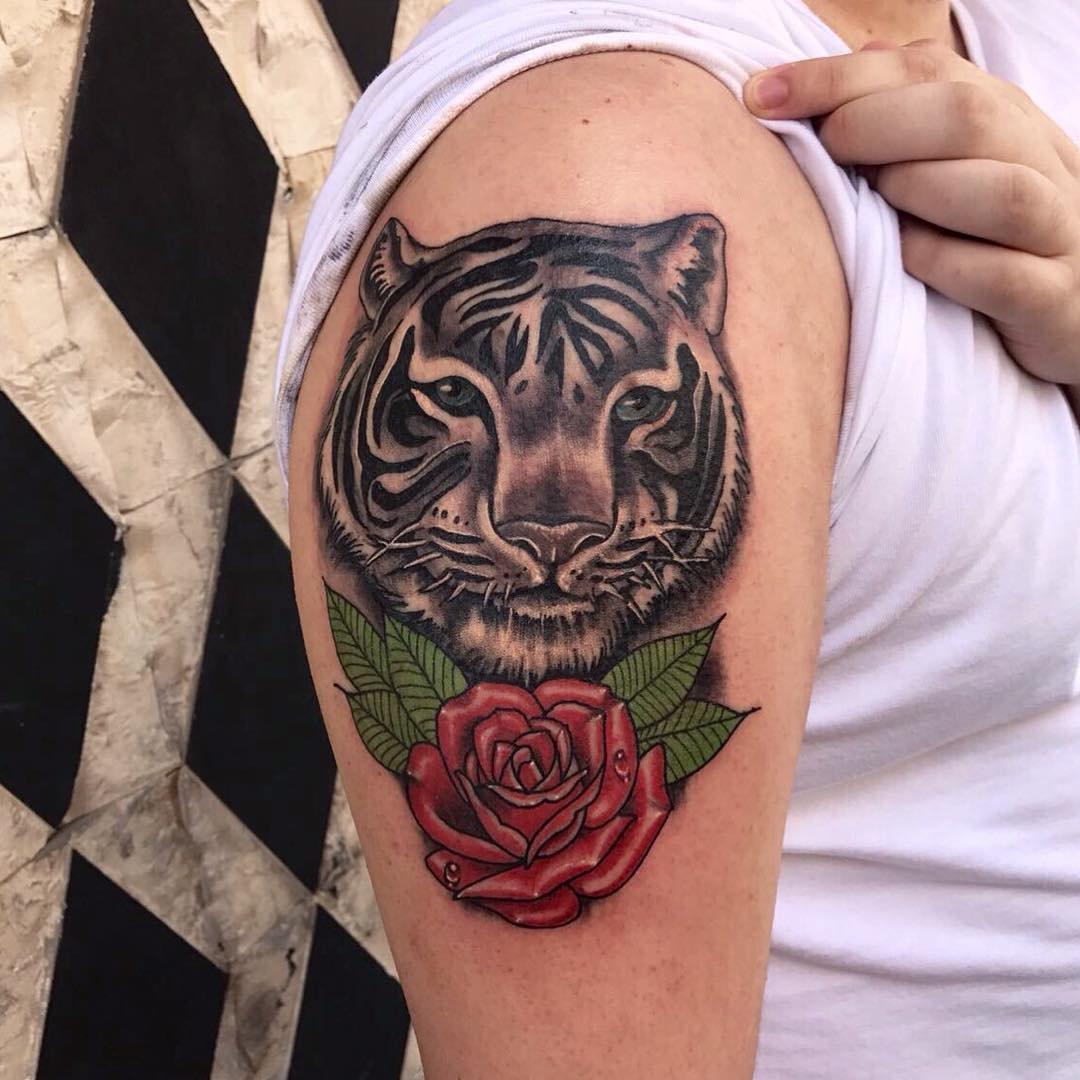 помогает картинки тигры с розами причину минуса