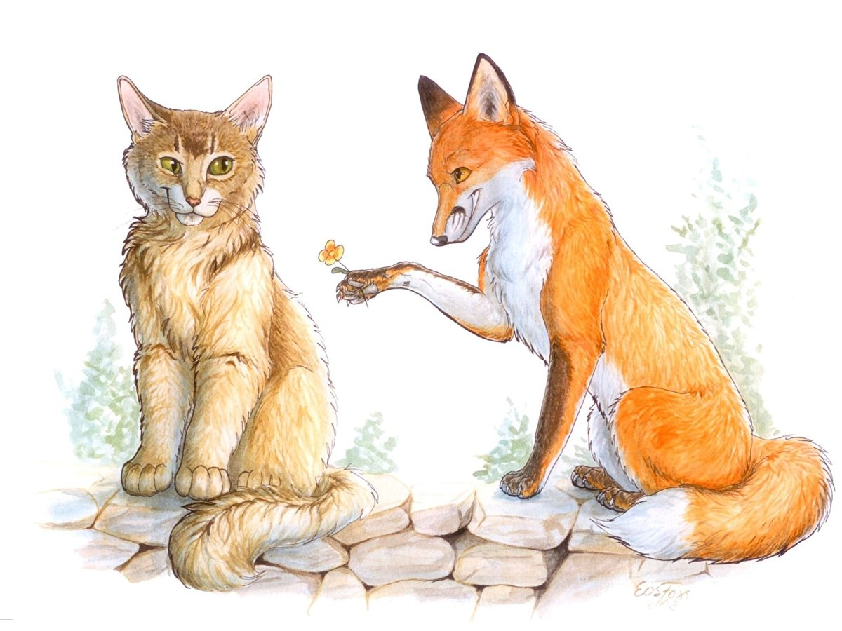 Лисичка и котик картинка
