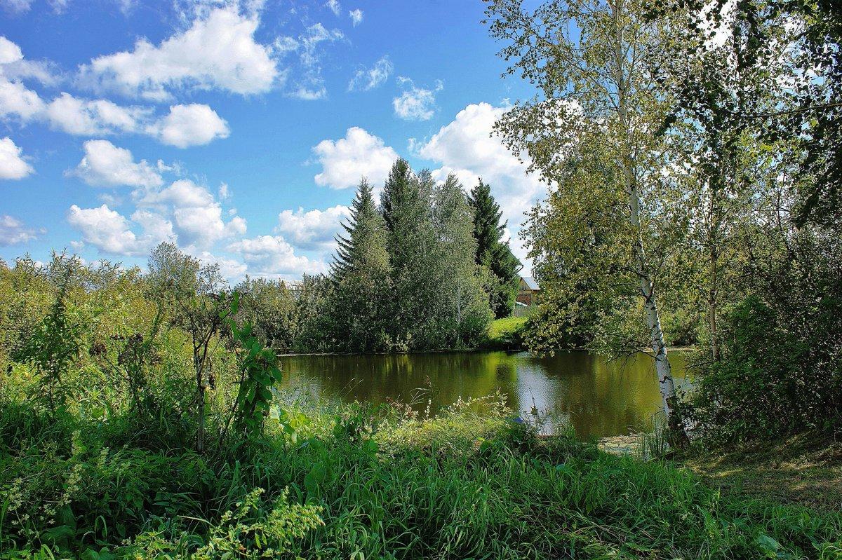 природа новосибирск фото вас будут играть