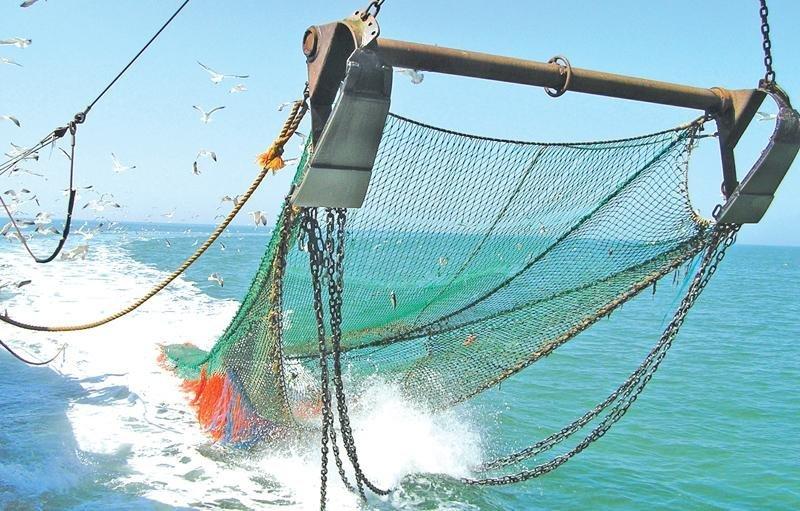 Где купить рыбацкую сетку