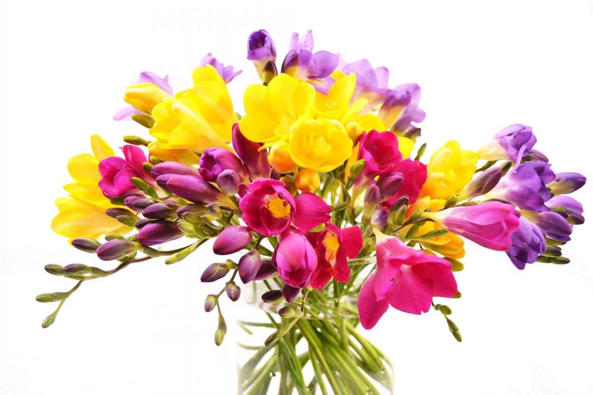 Или поделки, букеты весенних цветов на открытку
