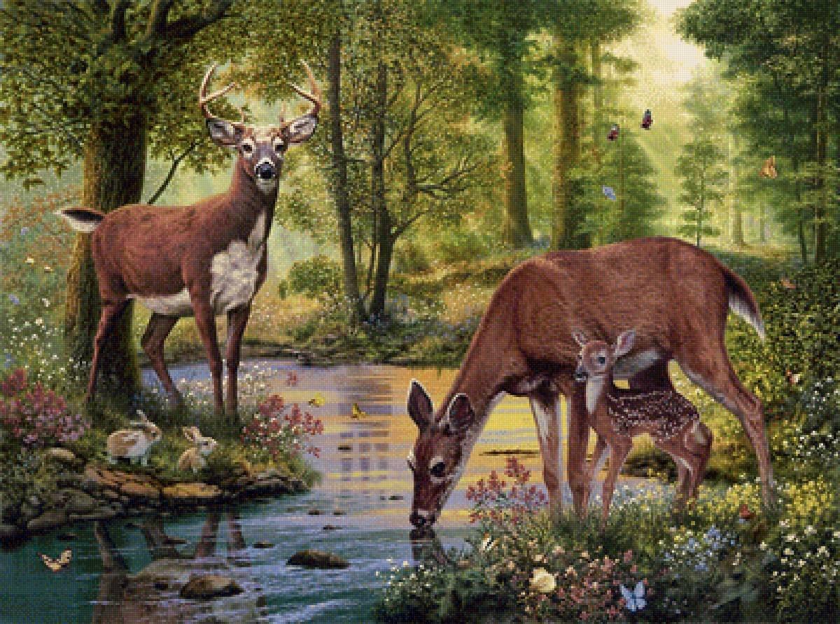 Приколы, картинки и анимации животных и природа