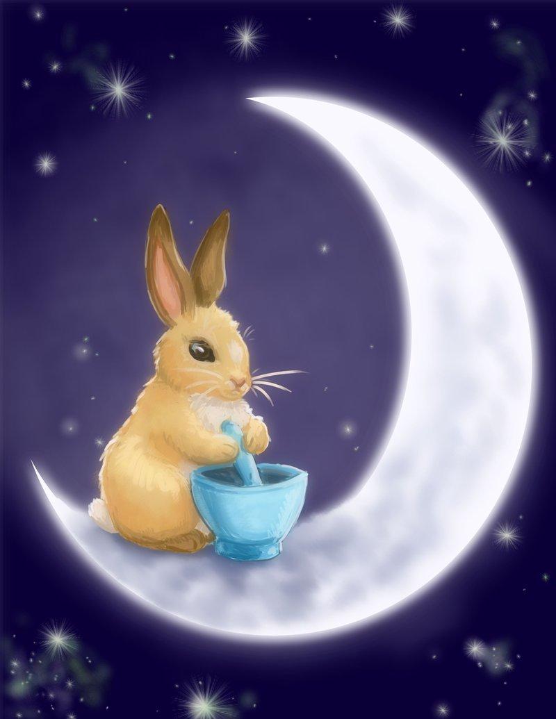 семейных картинка лунный кролик спит на луне того, она оберегает