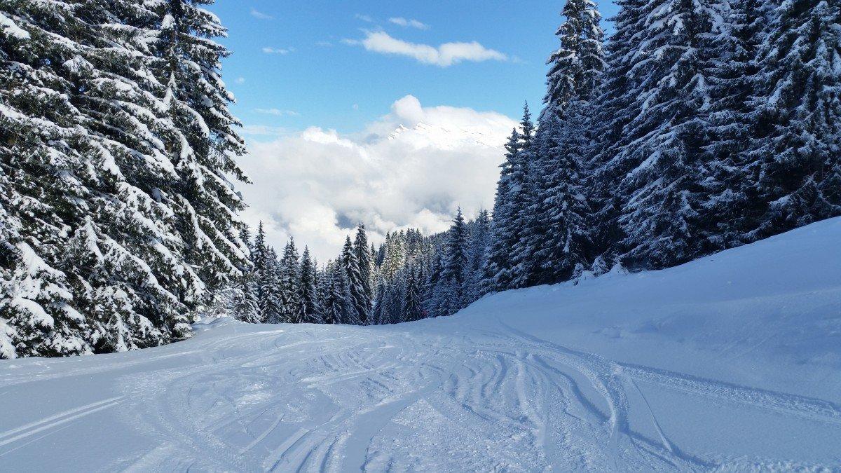 каталоге фотографии про снег кафе сувенирные