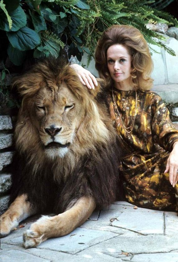 как вернуть женщину льва