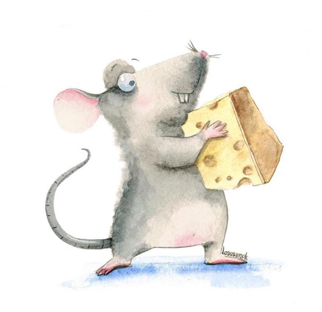 Надписью, смешная мышка рисунок