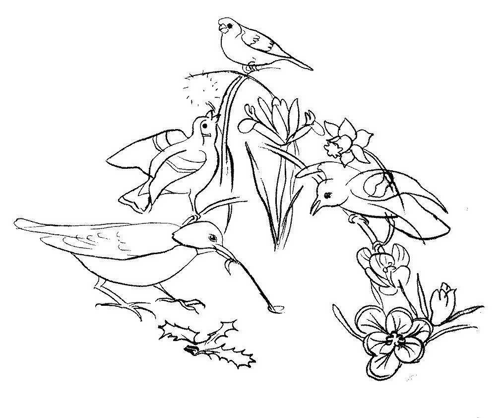 букет картинки о весне раскрашивать детёныши драконов