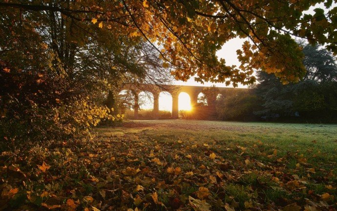 Осенний закат  в  Царицыно
