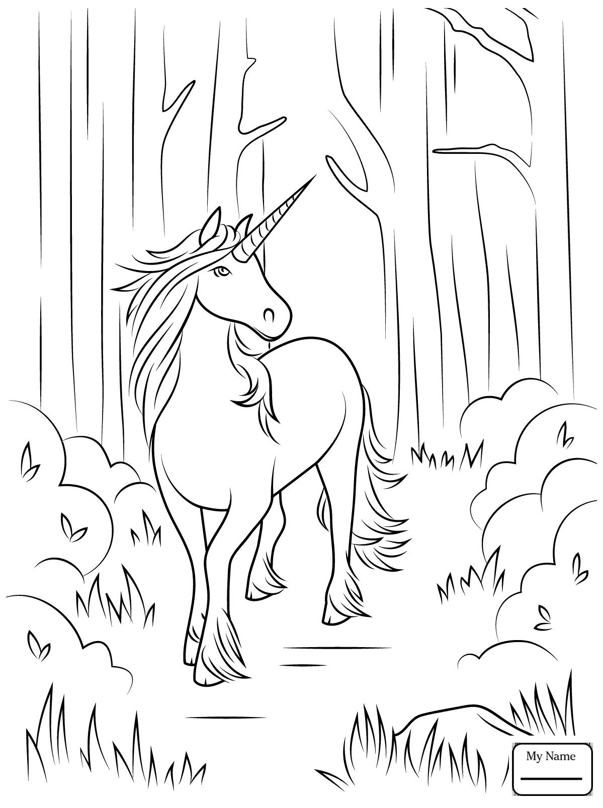 «Раскраска Единорог в лесу Раскраски для детей печать ...