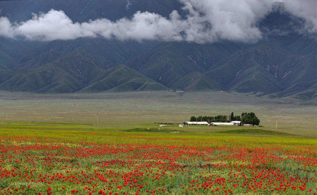 Картинки природа казахстана, подарок