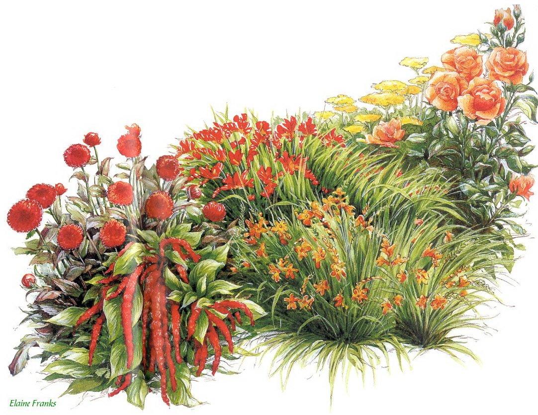Открытки клумбы с цветами, сделать открытки днем