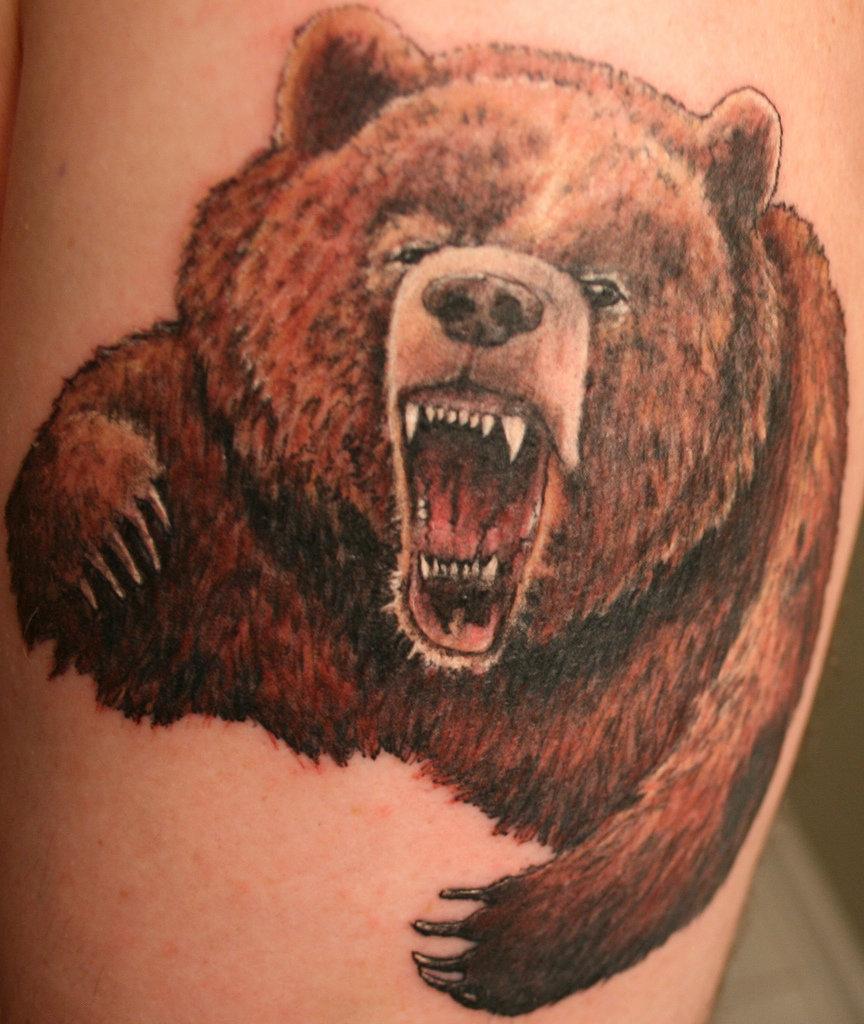 что означает картинка медведя идет