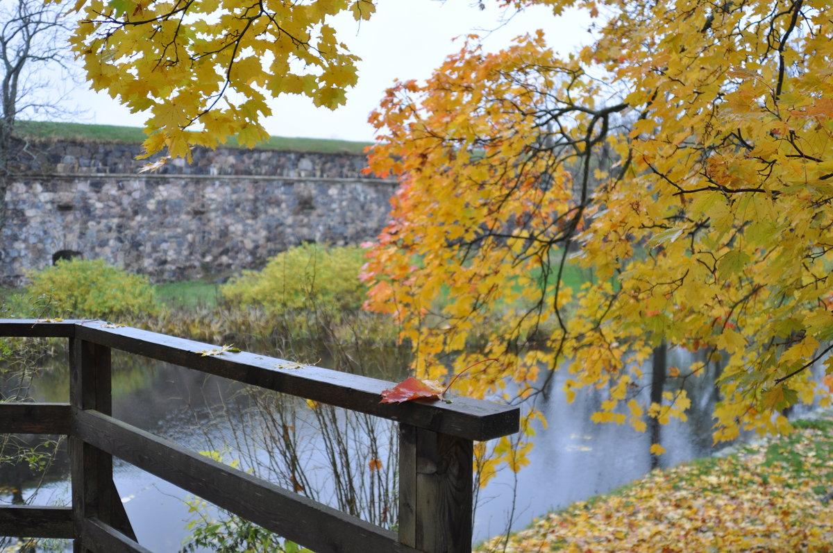 Днем, картинки наступила осень