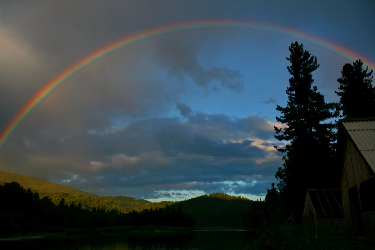 красивые виды радуги фото лепестки фоне желтой