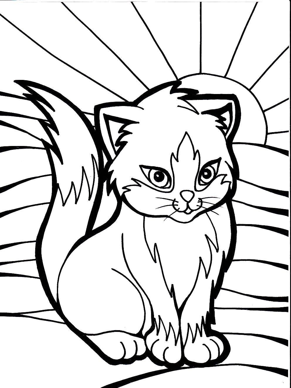 Картинки кошка и котенок для раскраски
