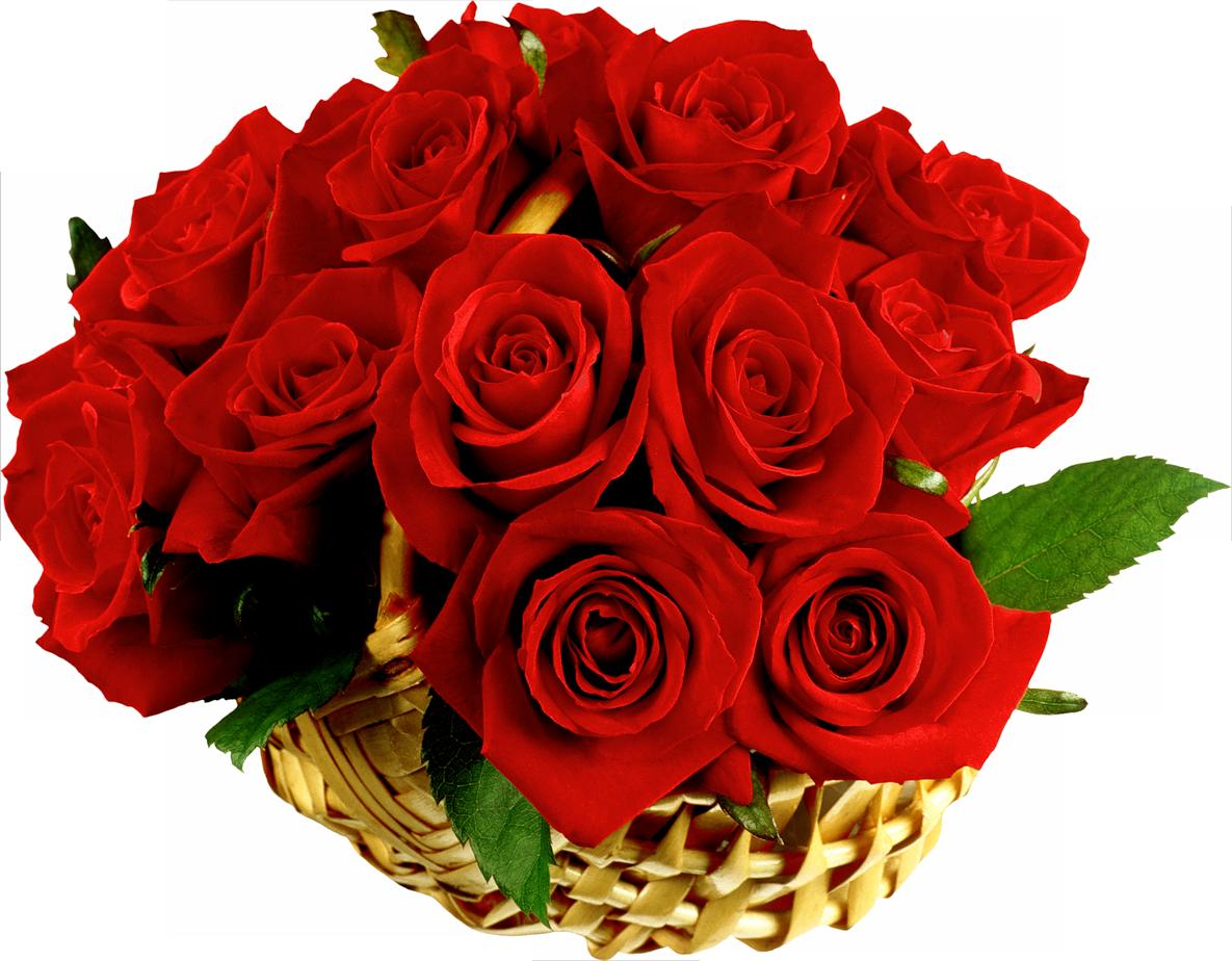 Анимированные букеты роз