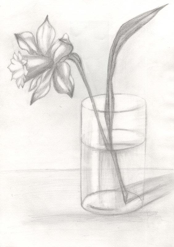 Картинки натюрморт карандашом цветы формы браслетов